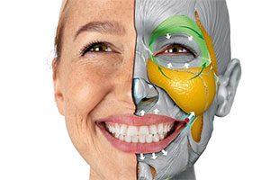 آموزش تشخیص ریزحالت های چهره - زبان چهره