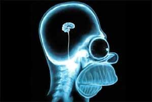 هیوریستیک و میانبر مغز