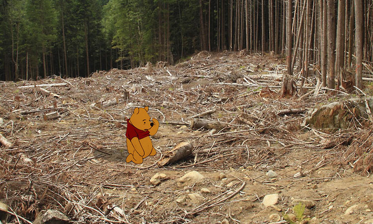 وینی خرسه – Winnie The Pooh