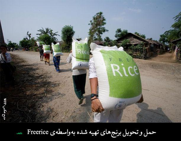 دستاوردهای مثبت یاد گرفتن زبان با استفاده از Free Rice