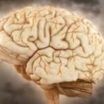 تعارض شناختی یا Cognitive Dissonance: چرا این تصمیم را گرفتید؟ (درس 5)