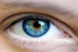 مذاکره، زبان بدن و ارتباط چشمی