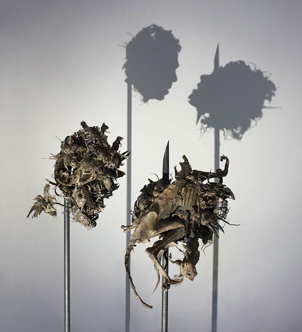 کومی یاماشیتا هنرمند خلاقیت با سایه