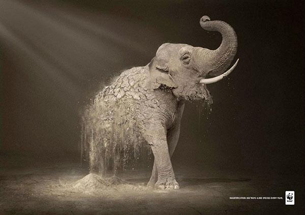 powerful-ads-animal-motamem-org-22