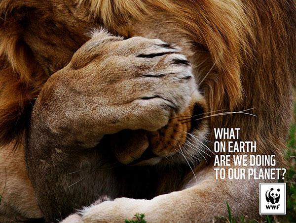 ما چه بر سر سیاره خود میآوریم؟