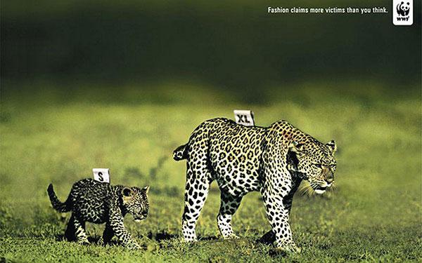 powerful-ads-animal-motamem-org11