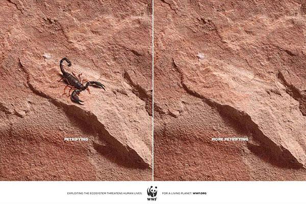 powerful-ads-animal-motamem-org6