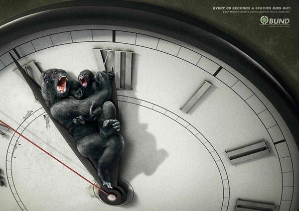 هر 60 ثانیه یک گونه حیوانی میمیرد. هر دقیقه حساب بشه.