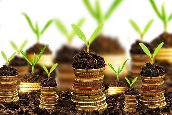 سرمایه گذاری و پرسشهای کلیدی قبل از آن