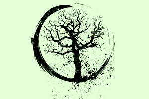 چرخه عمر چیست و چگونه تعریف میشود