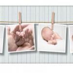 سازمان در مرحله تولد و مفهوم تعهد