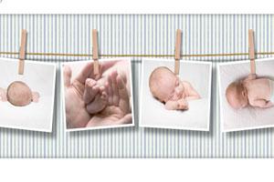 دوره عمر سازمان - بررسی مقطع تولد