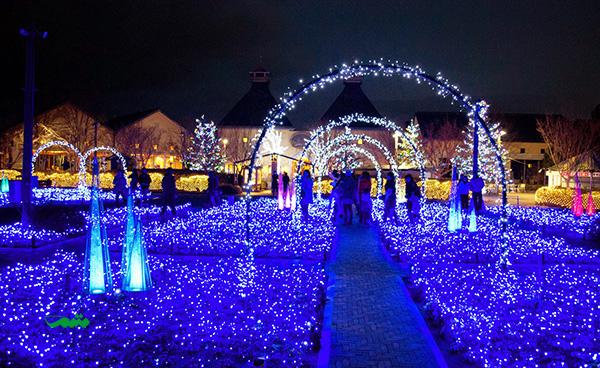 جشنواره چراغ های زمستانی در ژاپن