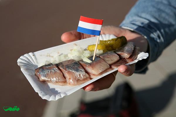 ماهی که به مدت پنج روز یا بیشتر در سرکه و نمک و سبزیجات معطر نگه داشته میشود- ollandse Nieuwe