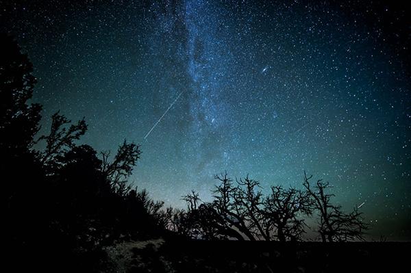 شبهای پر ستاره