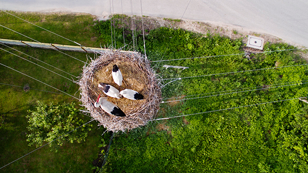 drone-photography-011