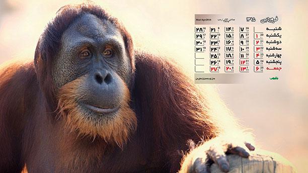 تقویم فروردین نود و پنج -والپیپر
