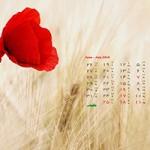 تقویم تیر ماه ۹5 (مجموعه والپیپر – تصاویر پس زمینه برای دانلود)