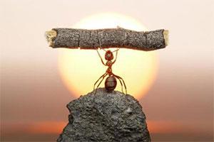 اعتماد به نفس چیست؟ تفاوت اعتماد به نفس و عزت نفس چیست؟
