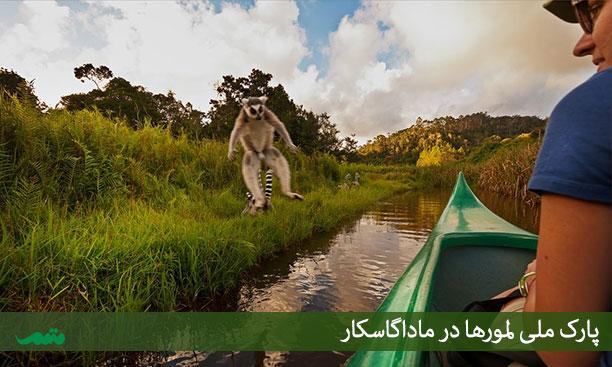 بهترین زمان سفر به ماداگاسکار - مناطق دیدنی ماداگاسکار