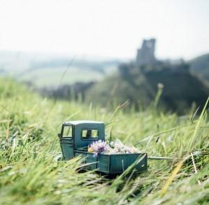 ارسال گل به قصر کورفه - روستای دورست - انگلستان