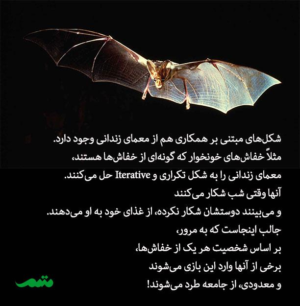 مثال از کاربرد معمای زندانی در زندگی حیوانات - خفاش های خونخوار