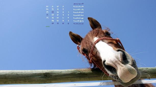 تصاویر حیوانات برای دسکتاپ همراه با تقویم