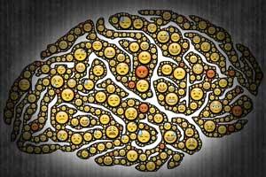 نقش احساسات در تصمیم گیری