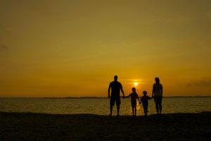 تعریف سرمایه خانوادگی چیست
