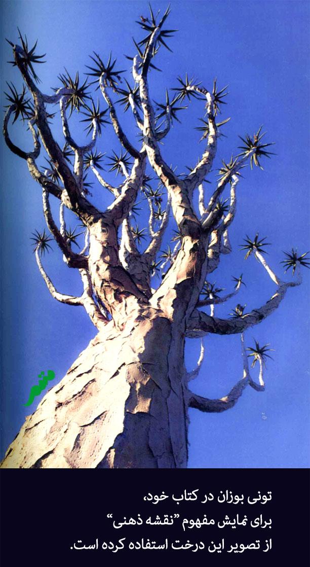 مثال نقشه ذهنی - تونی بوزان آن را به درخت تشبیه میکند