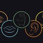 عادتها و تجربهها: برای تقویت حواس پنج گانه خود چه کردهاید؟