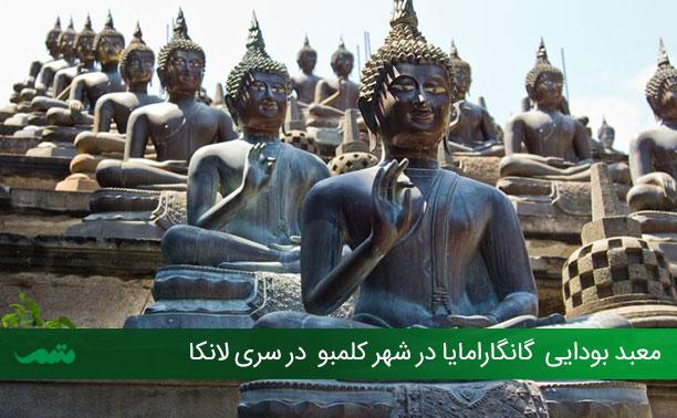 راهنمای سفر به سریلانکا - خاطرات سفر به سریلانکا