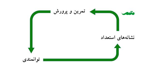 فرایند استعدادیابی و پرورش استعدادها