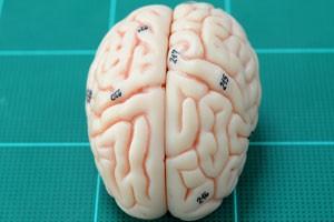 تعریف شناخت یا Cognition