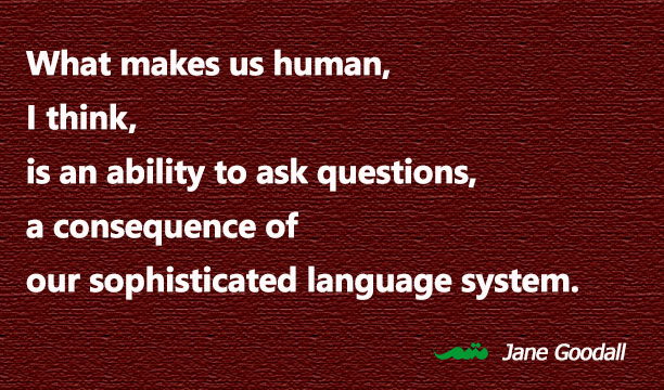 What makes us human, I think, is an ability to ask questions, a consequence of our sophisticated language system. Jane Goodall - quotation