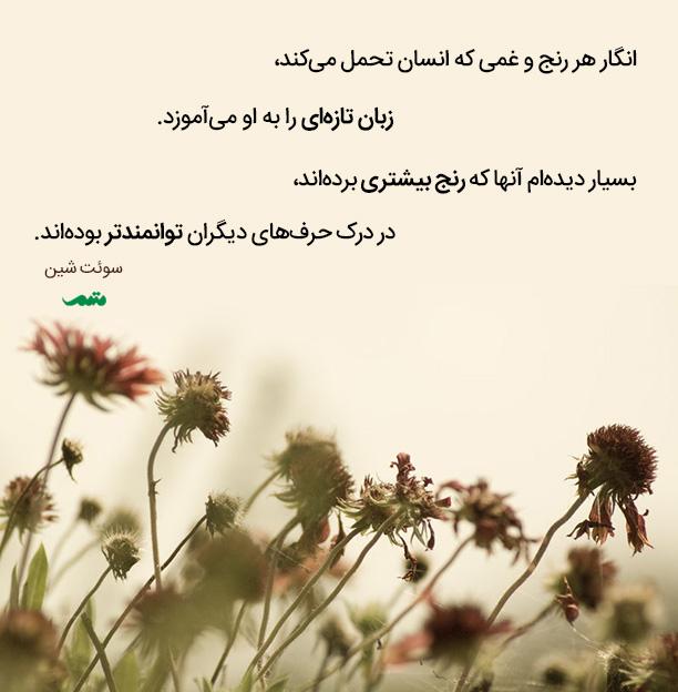 qoute_012_mtm_02_0015033