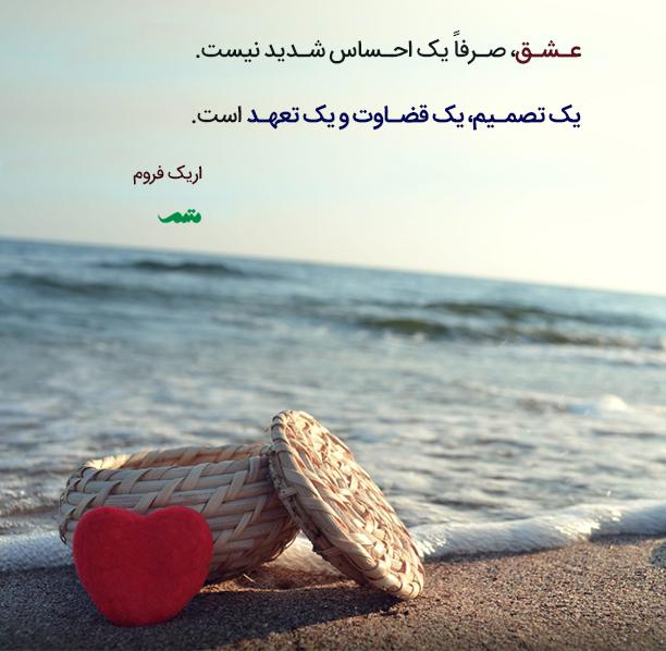 qoute_012_mtm_04_0016071