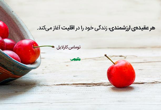 qoute_012_mtm_04_0016075