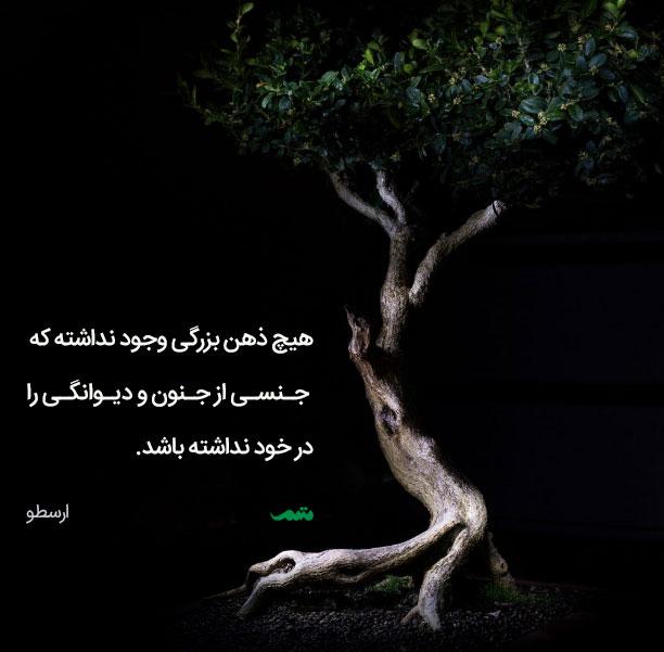 qoute_01_mtm_01_013