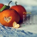 تقویم بهمن ماه (مجموعه والپیپر – تصاویر پس زمینه برای دانلود)
