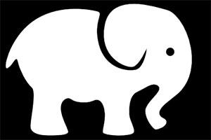 فیل سفید در مدیریت و کسب و کار