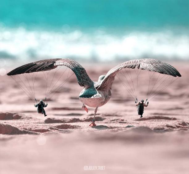 دیجیتال آرتیست و عکاسی خلاقانه