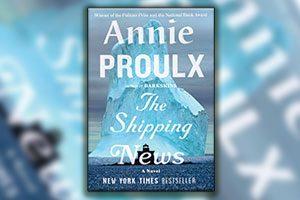 خلاصه کتاب یادداشتهای کشتیرانی - آنی پرو