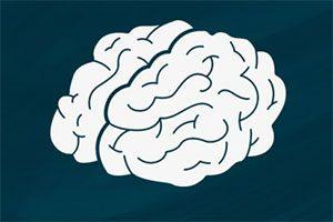 تعریف مدل ذهنی