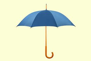 چتر مفهومی یا Umbrella Term