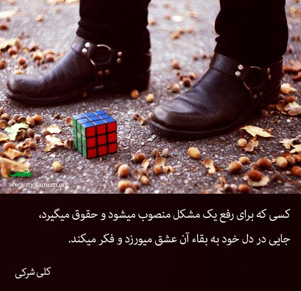 کسی که برای رفع یک مشکل منصوب میشود و حقوق میگیرد، جایی در دل خود به بقاء آن عشق میورزد و فکر میکند