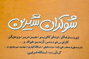 کتاب شوکران شیرین | اسدالله امرایی | داستان سوزنبان