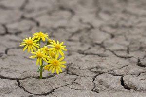 تعریف امید چیست؟ بررسی امیدواری در زندگی و ویژگی های افراد امیدوار