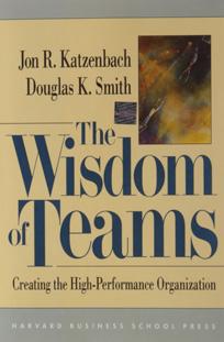 کتاب خرد تیم یا خرد کار تیمی - کتسنبک (کاتزنباخ)