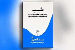 خلاصه کتاب شیب - ست گادین